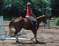 Louisa's daughter rides Zip